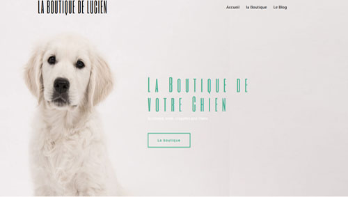 La boutique de Lucien