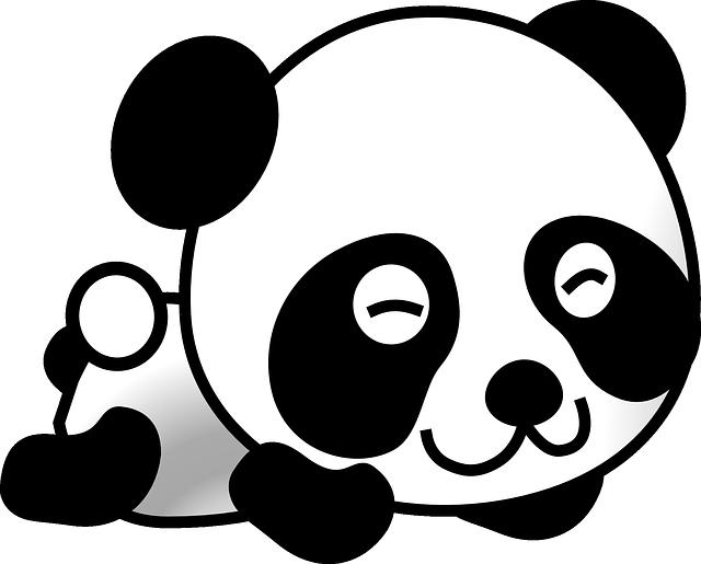 [Panda] Un site de qualité pour Google : Définition